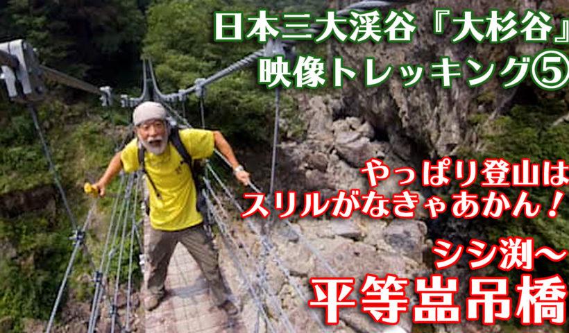 映像トレッキング5サムネイル 平等嵓吊橋